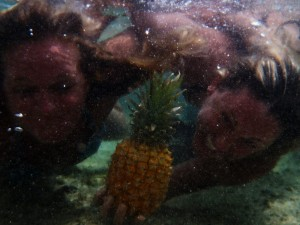 sandy pineapple 066